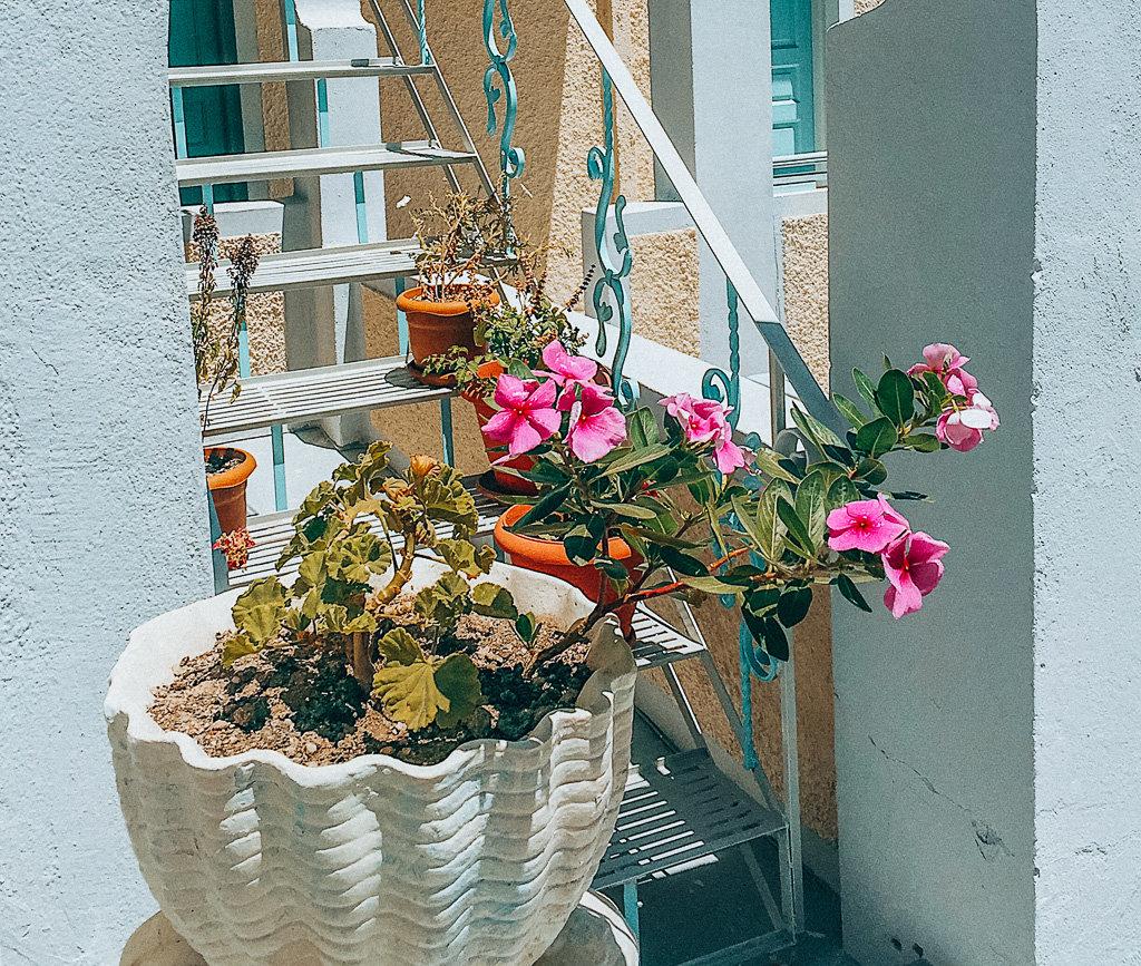 Solo Female Travel - Experiences in Santorini Greece Flower pot at Vicki's villa in Kamari